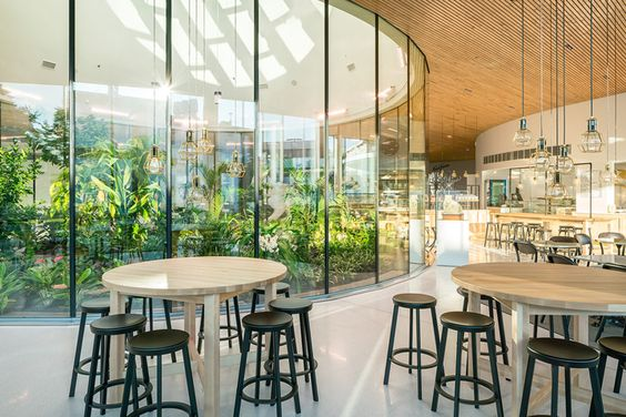 Un espace d'accueil vert au centre de l'espace détente de l'entreprise.